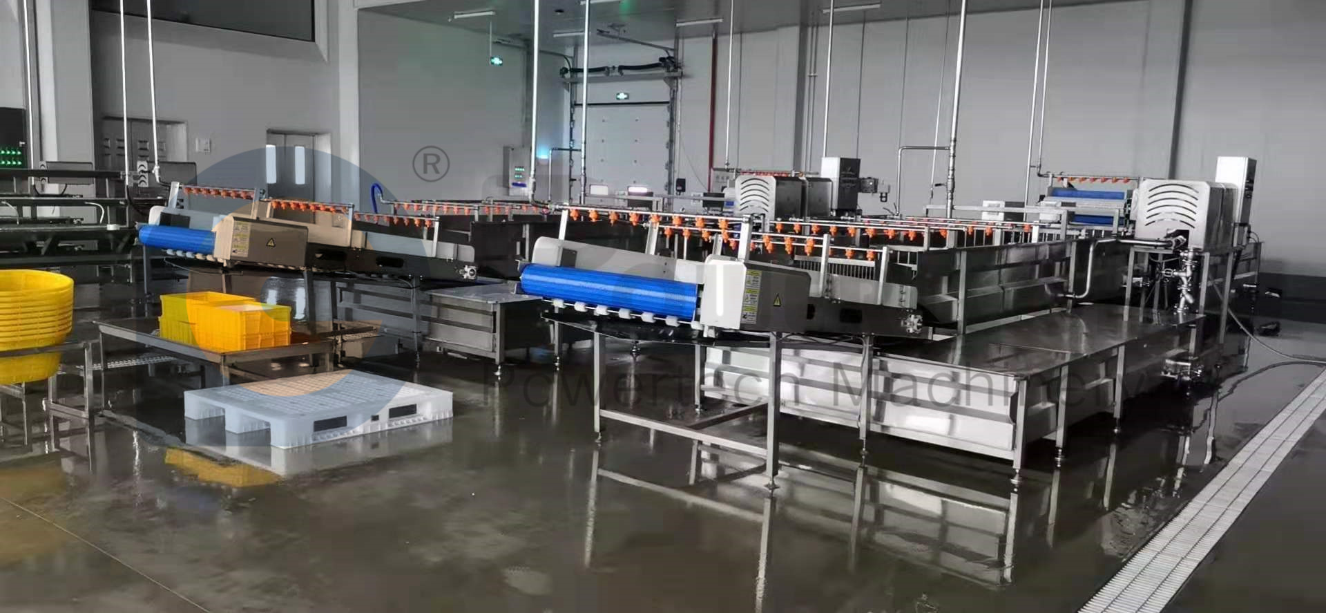 Industrial Food Grade Catfish Processing Line
