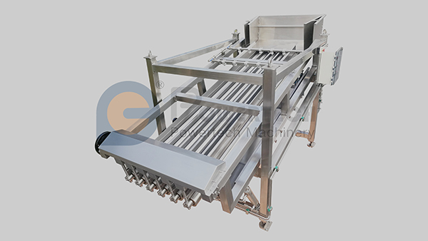 High Capacity Automatic Fish Grading Machine