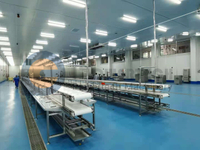 Food Safety Hygiene Catfish Processing Line